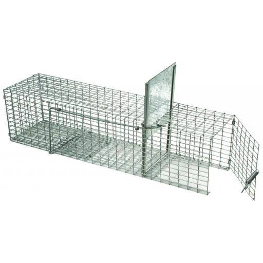 pi ge cage rat galerie ntd chasse et pi geage. Black Bedroom Furniture Sets. Home Design Ideas
