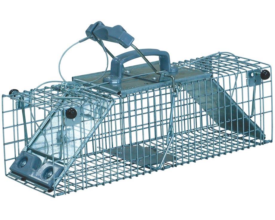 pi ge cage rat anti nuisible 2 entr es ntd chasse et pi geage. Black Bedroom Furniture Sets. Home Design Ideas