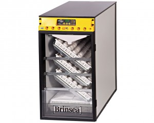 Couveuse OvaEasy 380 Advance - Brinsea