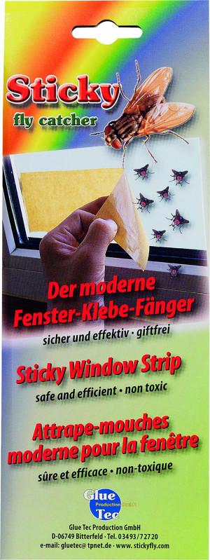 Piège à mouche autocollant pour fenêtre, lot de 6