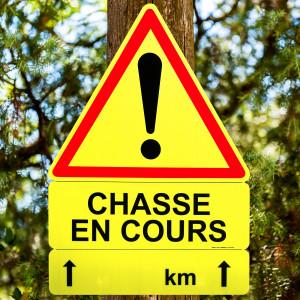 """Panneau triangulaire """"ATTENTION CHASSE EN COURS"""" en akylux 101x70 cm"""