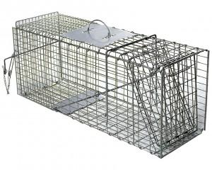 Piège cage à fouine