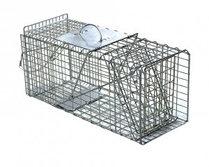 Piège cage à ragondin 65 cm