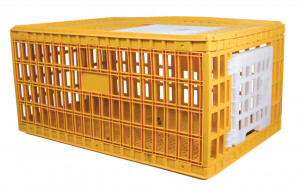 Caisse de transport plastique, taille XL